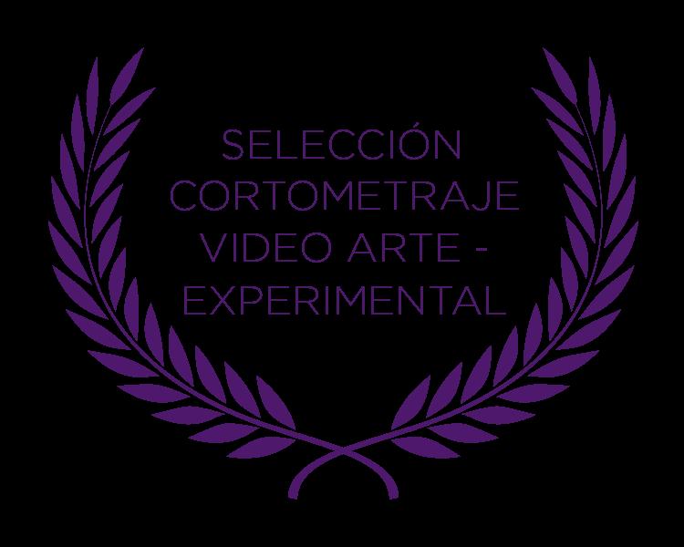 Cortometraje Videoarte Experimental
