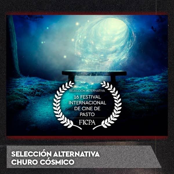 12-seleccion-alternativa